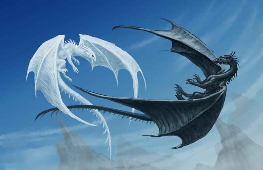 White-dragon-vs-black-dragon-02